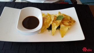 Chicken Ginger Gyoza